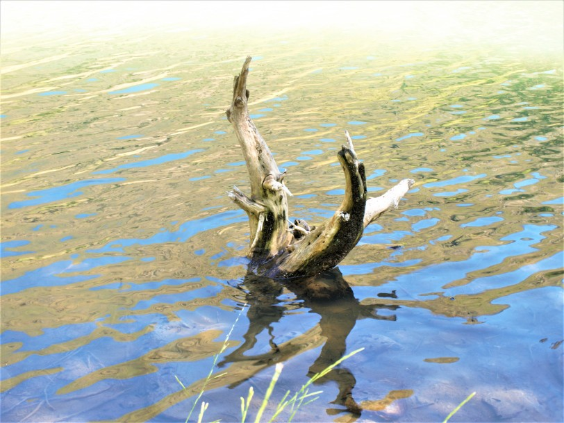 le lac Lanoux photo 6 La Gazette Catalane.jpg