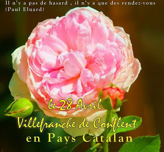 Villefranche de Conflent «Avril aujardin»