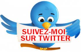 """Résultat de recherche d'images pour """"Suivez-moi twitter"""""""