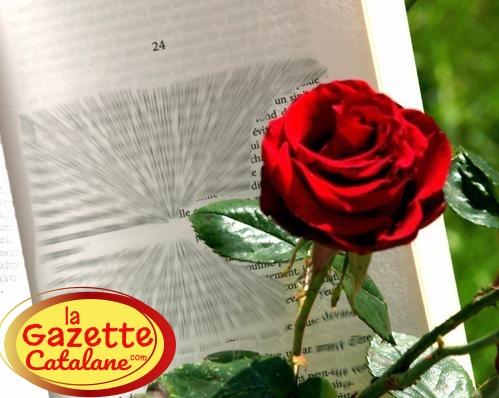 Le 23 Avril, c'est Sant Jordi!